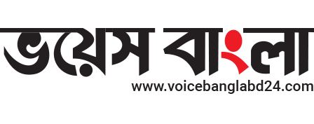 Online Bangla feature and news portal